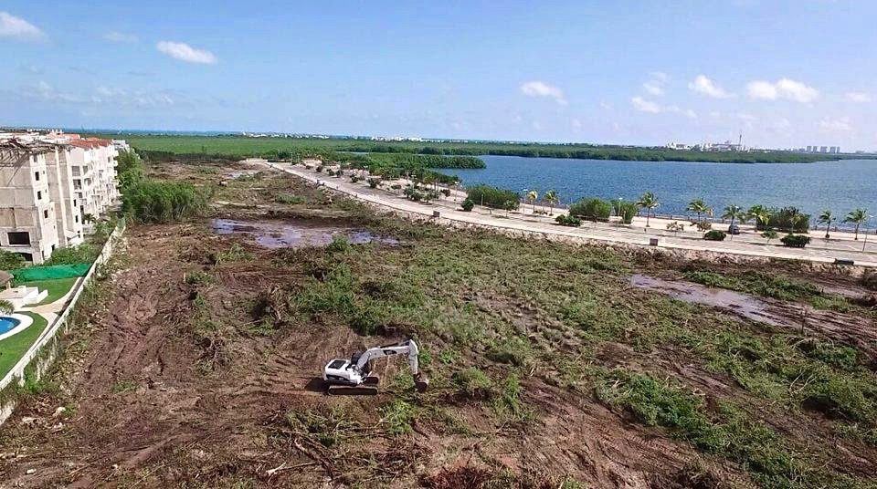 Devastación ambiental de mangle en Cancún por parte de Fonatur