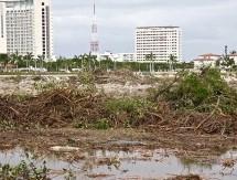 Defiende Semarnat el ecocidio en Cancún